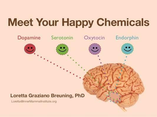 vucudumuzun-her-daim-serotonine-ihtiyaci-var-listelist