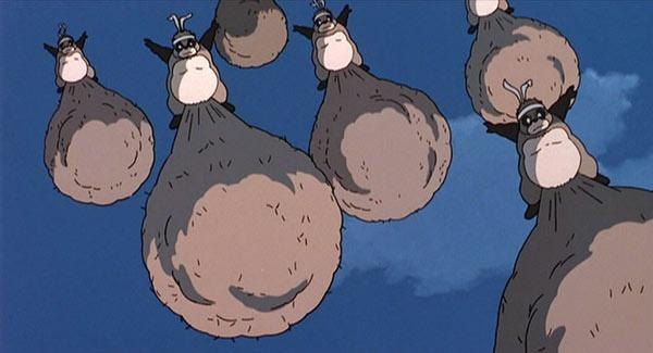 tanuki miyazaki