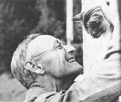 23- Hermann Hesse with Narciss