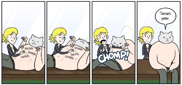 kedi-karikatur-16