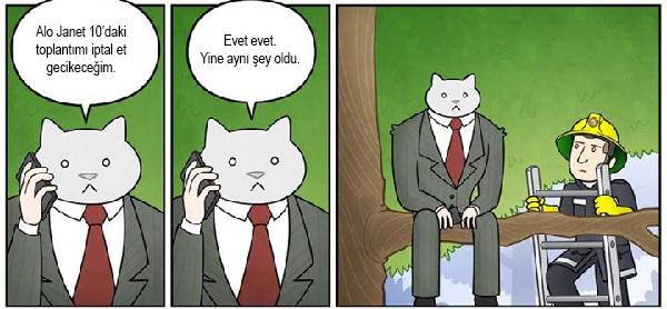 kedi-karikatur-19