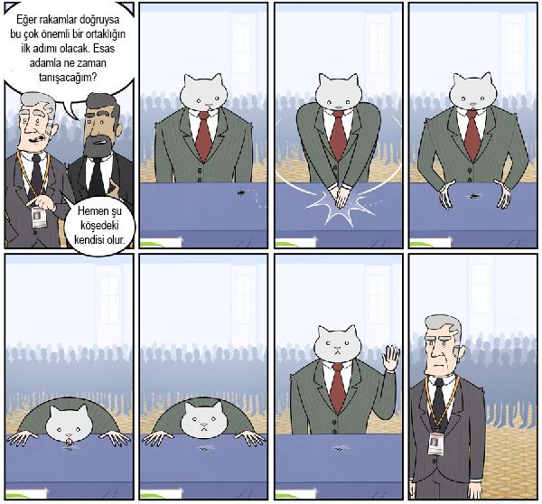 kedi-karikatur-21
