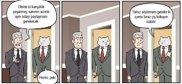 kedi-karikatur-23