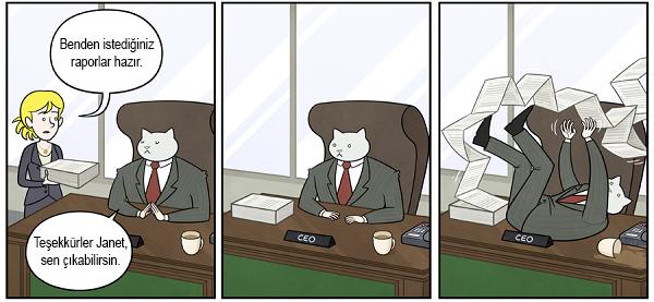 kedi-karikatur-4