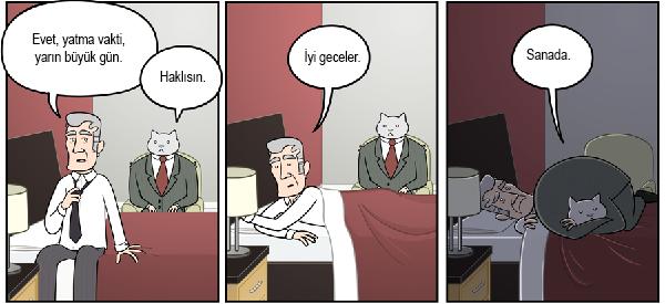 kedi-karikatur-78