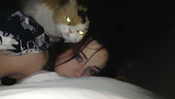 kedi6