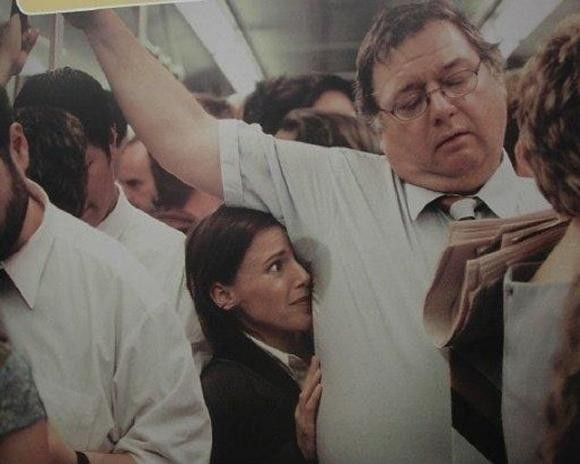metrobus_halleri