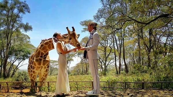 weddingcouple-wedding-around-the-world-travel-cheetah-rhiann-11