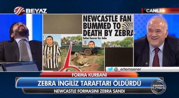 zebra-su-su
