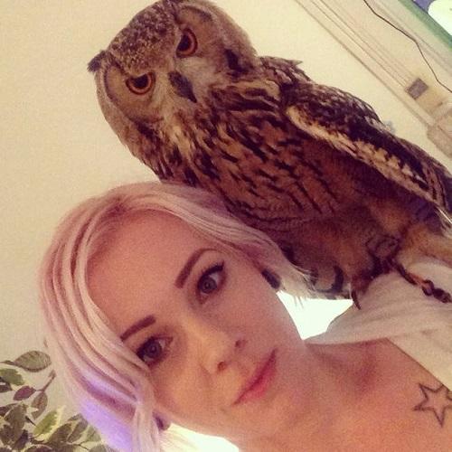 baykus-selfie