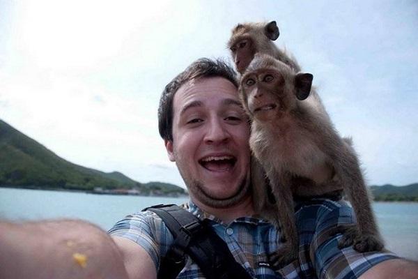 maymun selfie