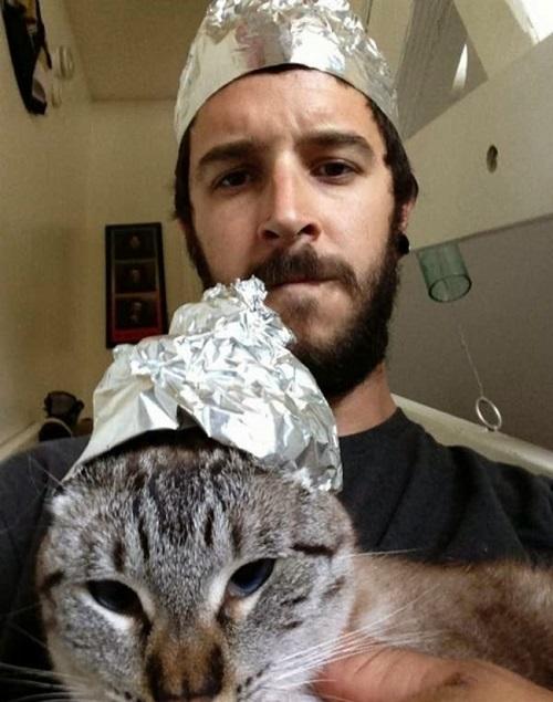 selfie-kedi
