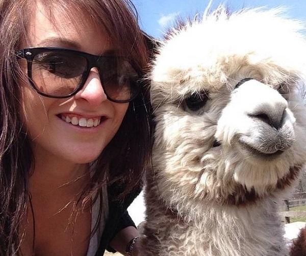selfie-lama