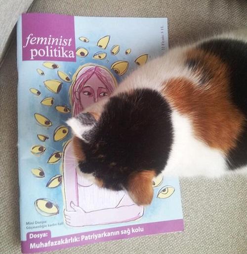 feminist-kedi