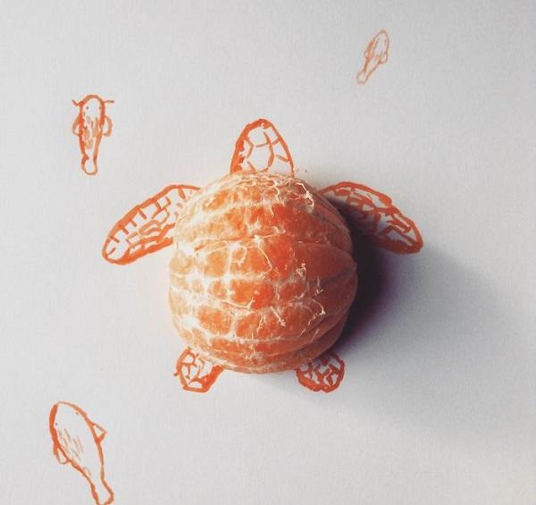 mandalina-turtle