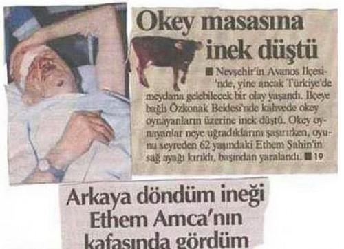okey-masasina-inek-dustu
