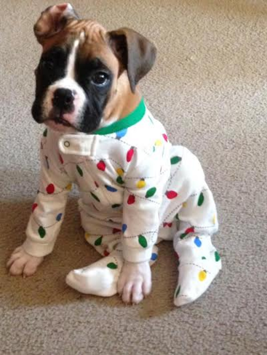 pijama15