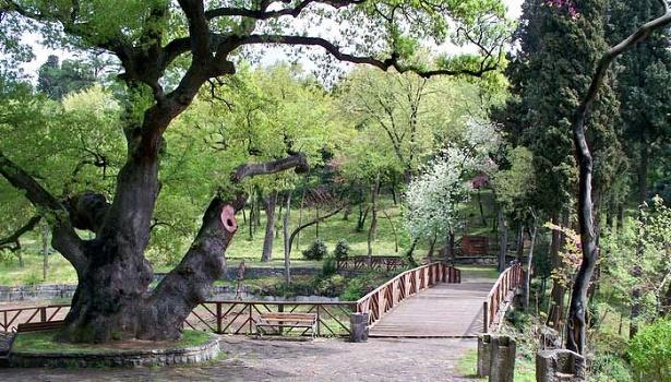 yildiz-parki-s
