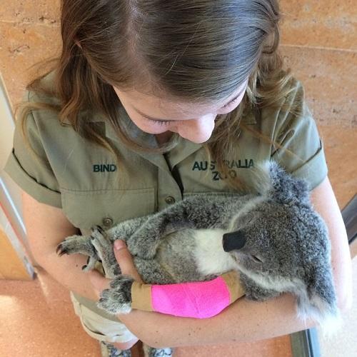 16-year-old-bindi-irwin-crocodile-hunter-fathers-legacy-australia-zoo-7