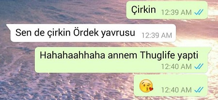 cirkin-ordek-yavrusu-thug-life-mesaj-anne