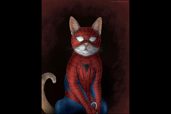 spidermancat