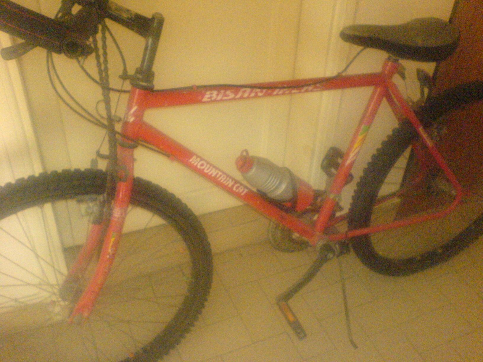 Bisan_Bisiklet