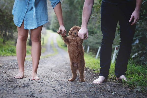 couple-newborn-dog