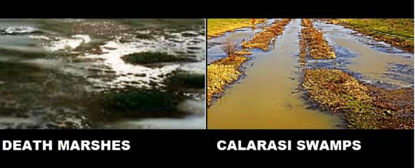 death-marshes-calarası-swamps