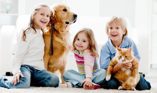 family-cat-dog-pet