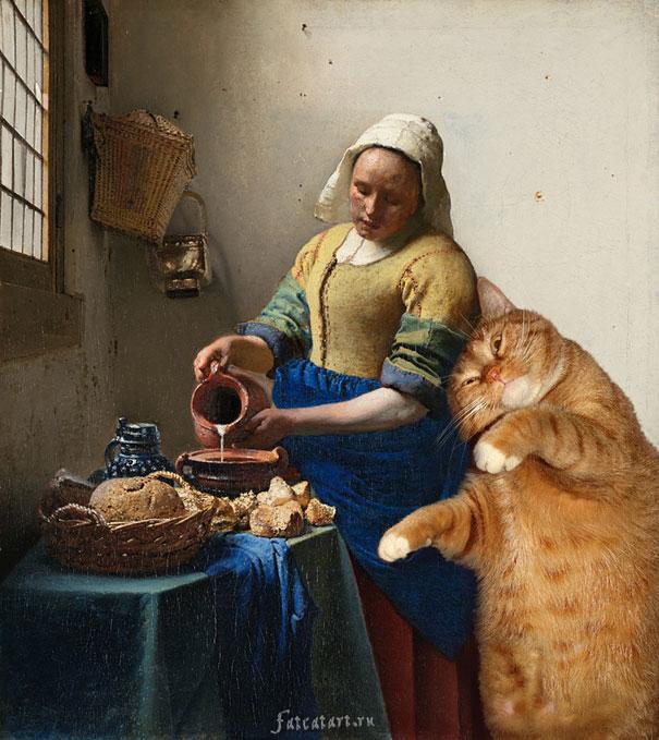 kedi mutfak