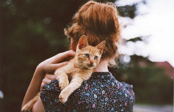 kedileri-seven-kadinlar-sabir