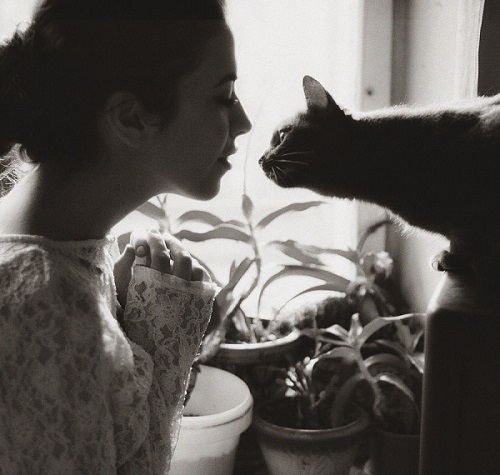 kedileri-seven-kadinlar-sadiktir