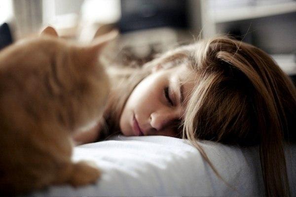 kedileri-seven-kadinlar-sevmek