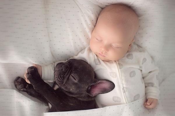 kopekle-uyuyan-bebek-listelist