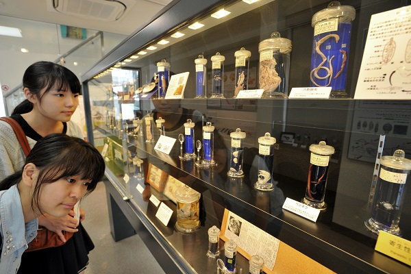 Megro Parasitological Museum , front girl, Shizuka Kameda (20), and Ayumi Goto (19) , at Meguro on Sept. 17, 2014.  YOSHIAKI MIURA PHOTO.  for at a glance