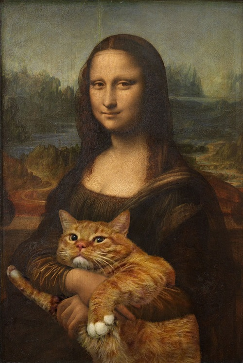 mona lisa kedi
