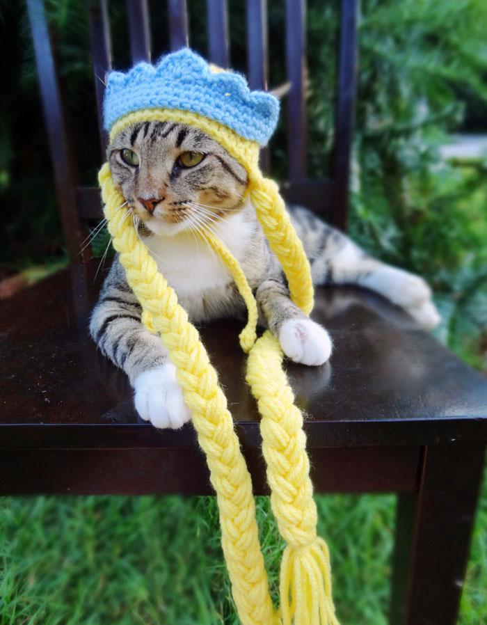 rapunzel-kostum-kedi