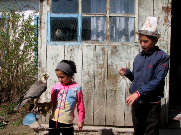 tale-kirgizistan-kartal-2