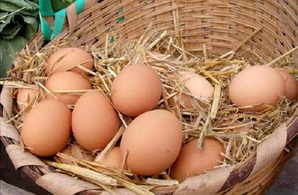 yumurta-sepeti