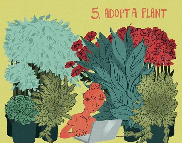 5.Plants