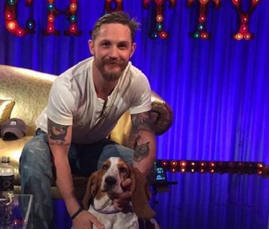 tom hardy dogs