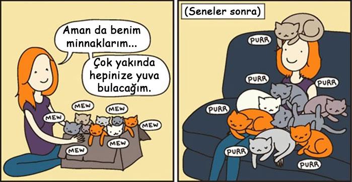 25.komik-kedi-resimleri-3