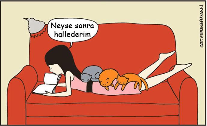 3.kedi-ile-yasamak-nasil-2