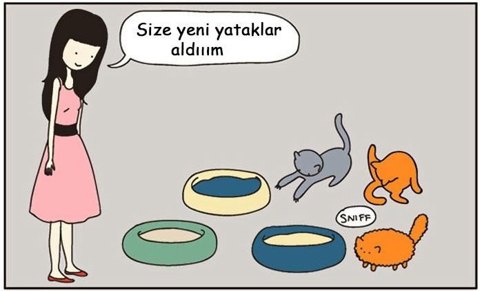 4.cok-komik-kediler