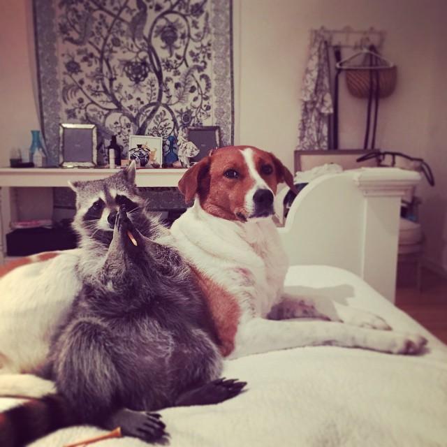 dostluk-koltukta