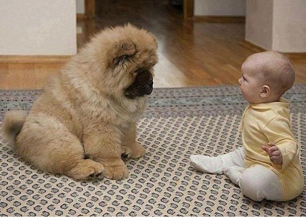 tatli bebek