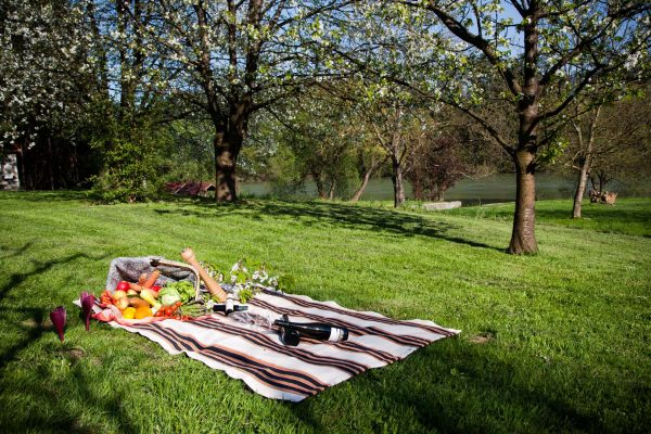 3.piknik.yapma.istegijpg