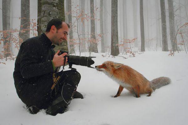 doga fotografcisi