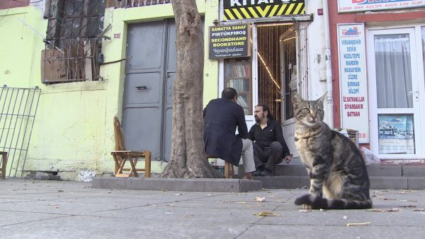 istanbul-sahaf