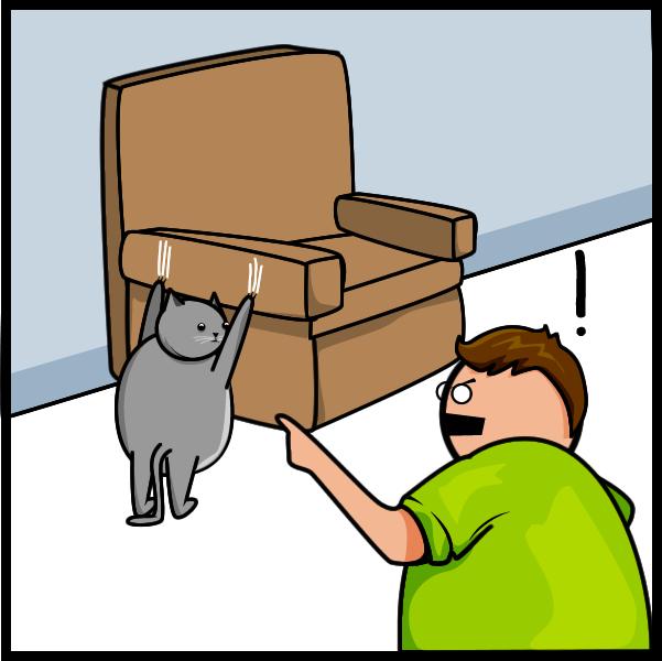 kedi tirmala